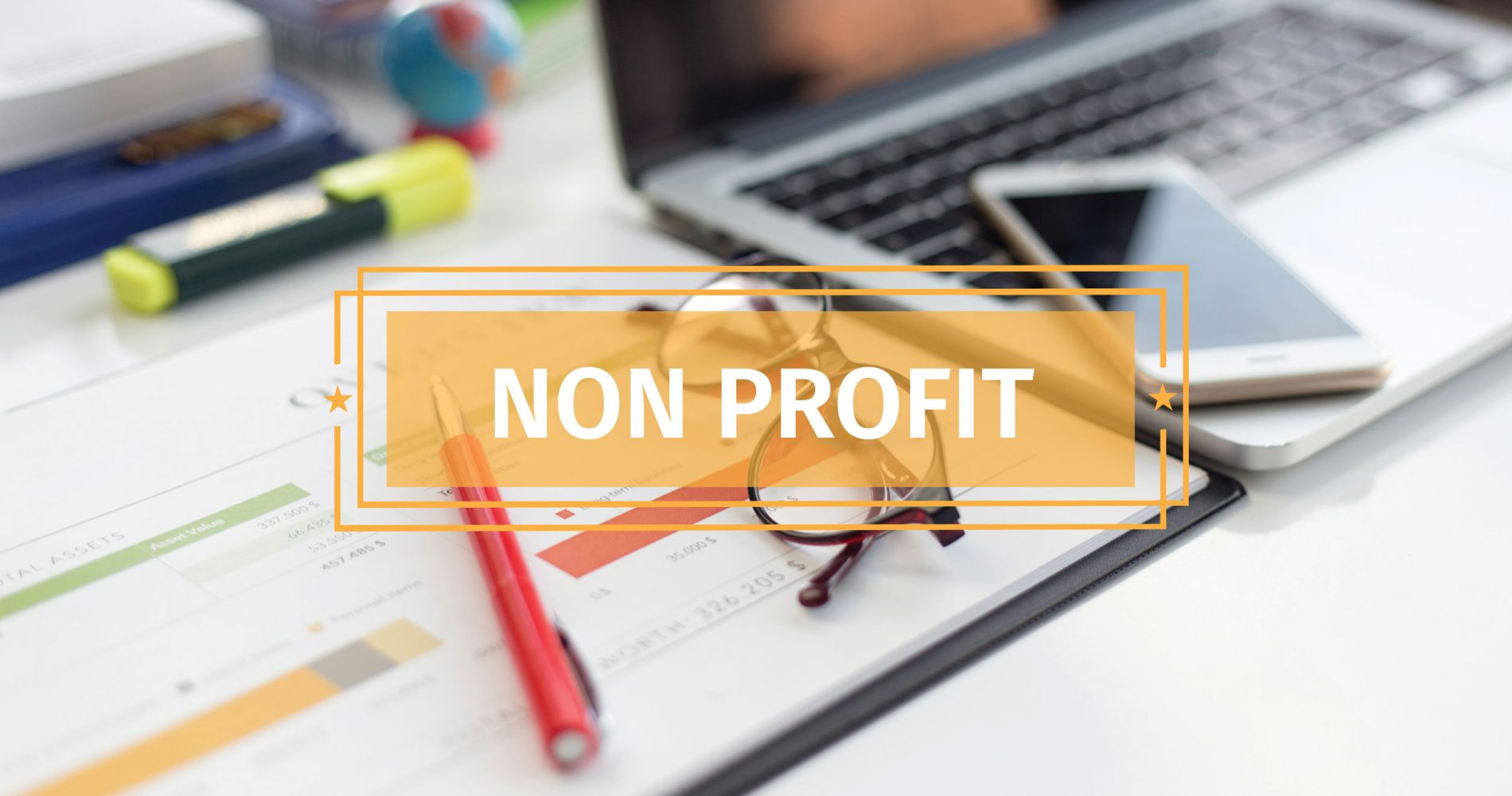 BUSINESS CONCEPT: NON PROFIT
